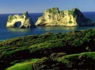 Покупать недвижимость в Новейшей Зеландии
