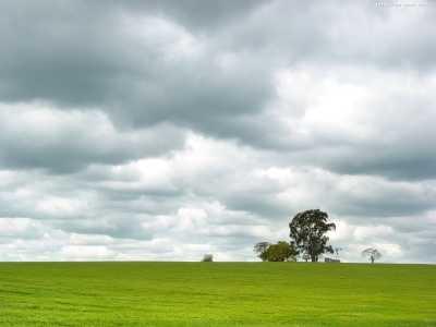Плюсы и минусы «зеленого» стройки