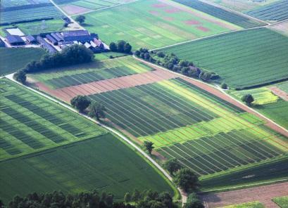 Выгодная покупка промышленных земель от компании